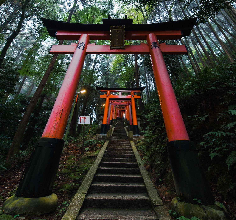 在森然妖氣中臭著臉理性解謎:身兼舊書店長、神社傳人與陰陽師的京極堂