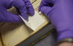 Non-invasive-sampling-extracting-protein-from-parchment-using-eraser-crumbs-Reproduced-by-courtesy-of-The-John-Rylands-Library-University-of-Manchester-2