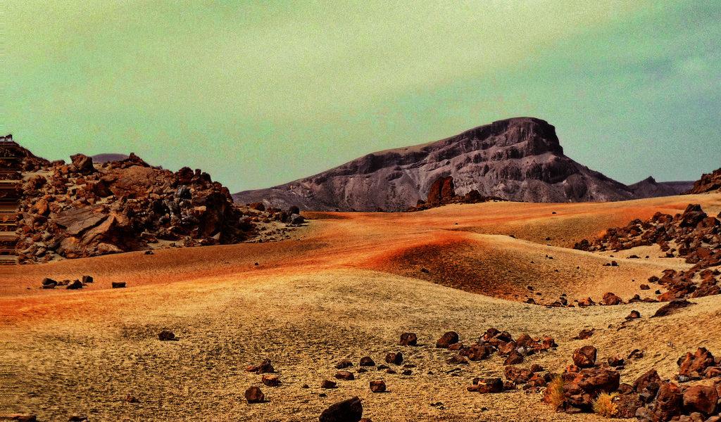 mars life