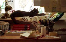 【讀者舉手】作家與編輯,躺著也中槍──《歪笑小說》
