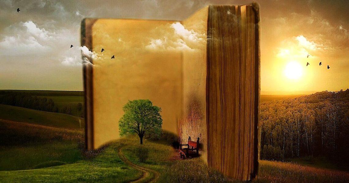 【瞿欣怡的小貓之流】我生活、讀書、寫作,在日常裡,在時代的興衰裡