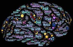 【GENE思書軒】把你左右腦之間的連結咔嚓掉,你會變成什麼樣子?