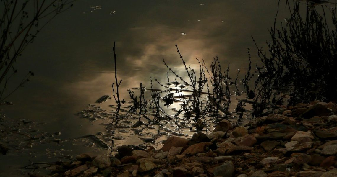 【祁立峰讀古文撞到鄉民】一千年後我又紅回來啦!比「一片歌手」更狂的「一首詩人」!