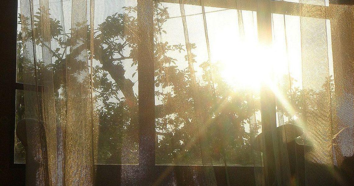 【果子離群索書】你帶走我唯一的窗