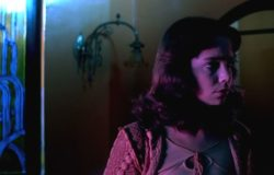 【Waiting:上山頭,拚書影】跨類型的傳承路徑──從義大利恐怖電影到日本新本格推理
