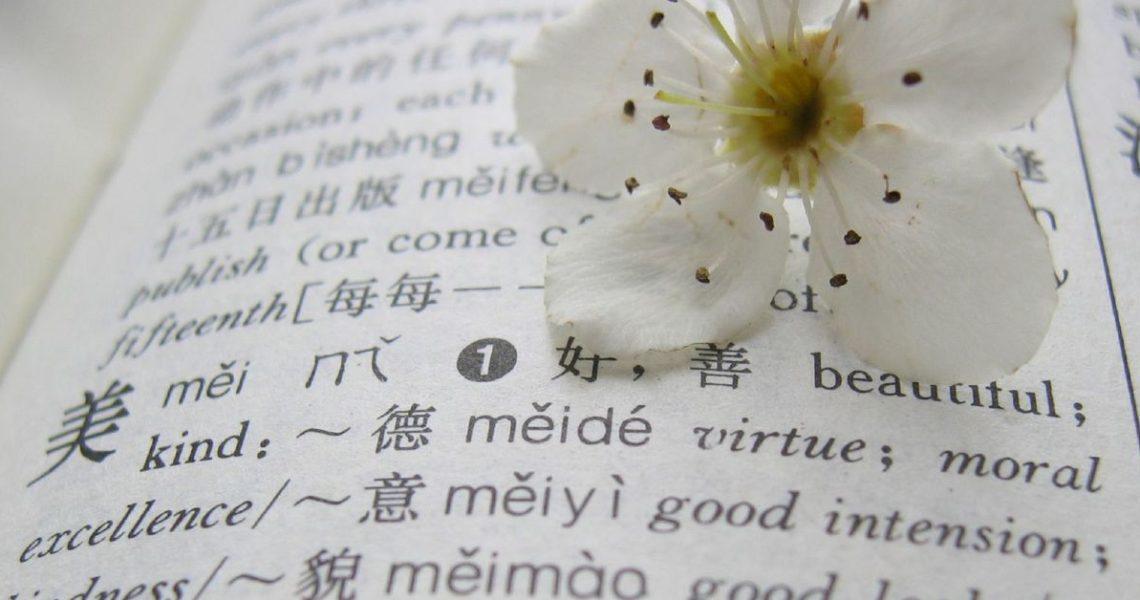 【楊勝博上街讀小說】愛也好、心也好,都因詞彙而有了形體──《啟航吧!編舟計畫》