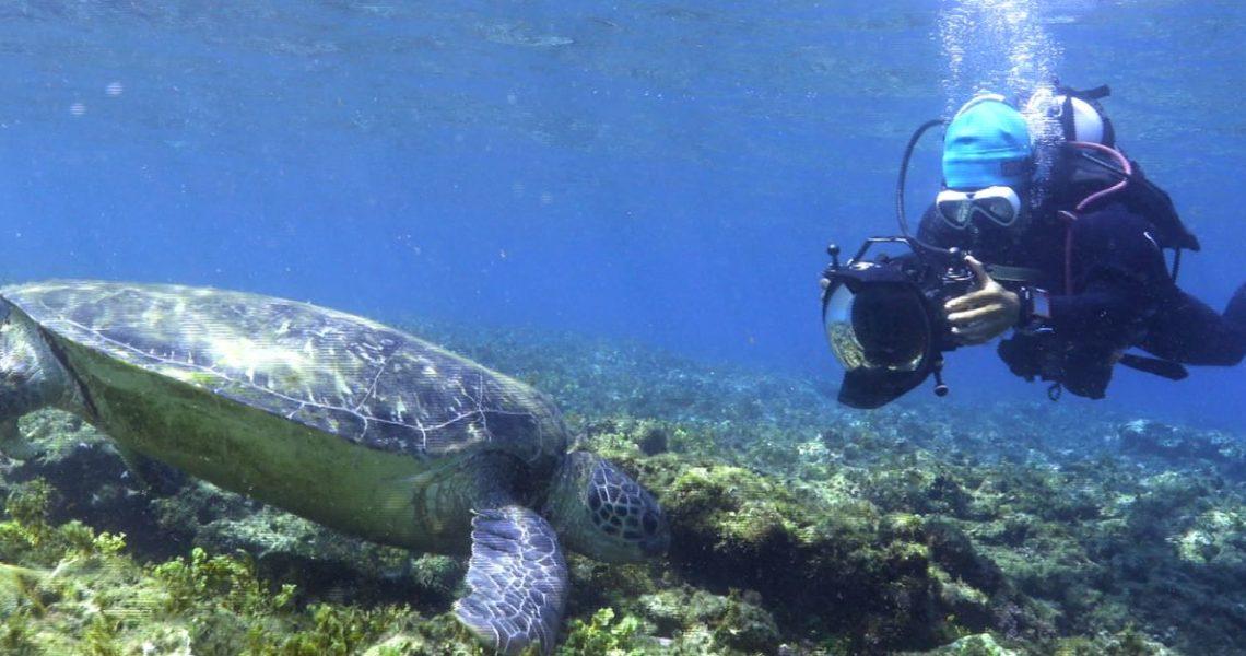 【熱青年】海洋塑件簿──我能替海洋做的事,你也可以!