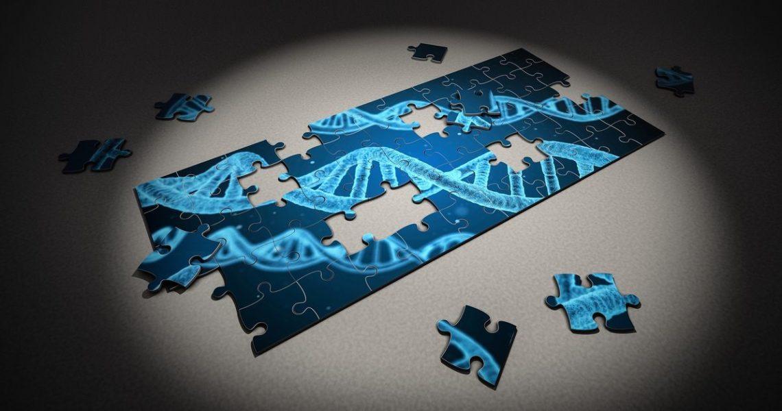 從揣測、誤用,到專利大戰──《基因:人類最親密的歷史》
