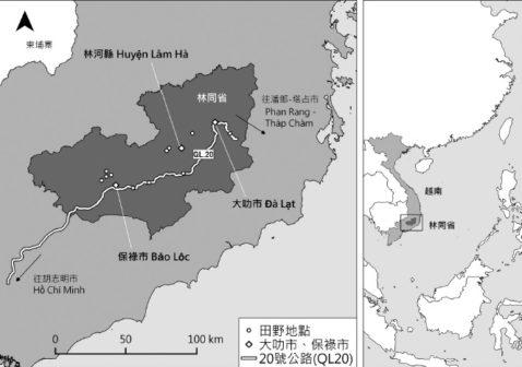 越界台茶田野地圖