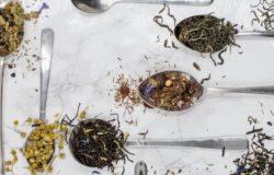 「越南的烏龍茶就是一股蟑螂屎的味道。」
