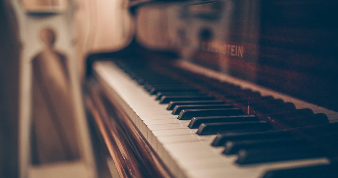 習樂多年的耳朵不會沒聽到,兩個靈魂振動所發出的聲音。