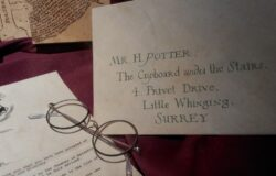 粉絲魔法成真!泰籍插畫家Arch Apolar精美繪製《哈利波特》二十週年紀念版書封