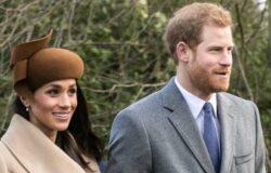 王室記者出版傳記,揭露哈利與梅根引退王室秘辛