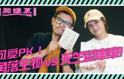 【閱讀夏LaLa】可愛PK!《角落生物》VS《天竺鼠車車》
